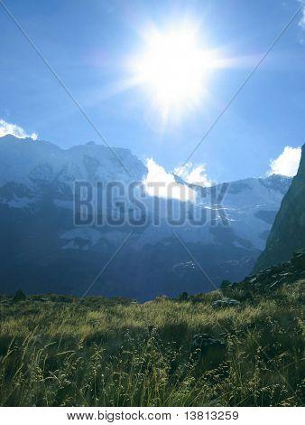 Sun and grass in Cordilleras mountain