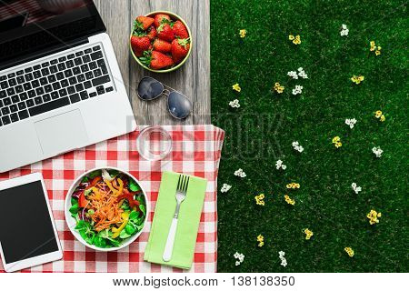 Picnic Setting With Laptop