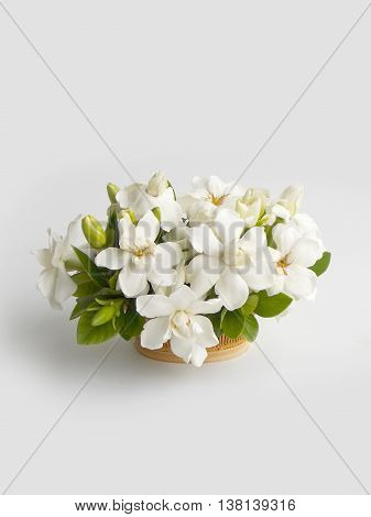 Beautiful white gardenia flower bouquet in basket background