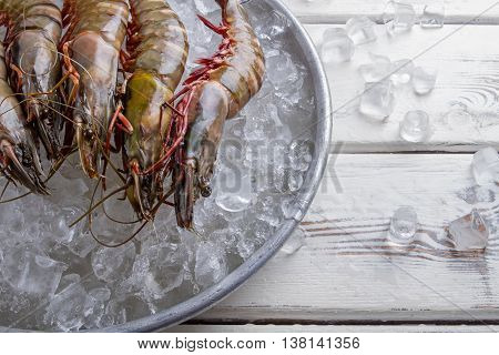Shrimps with ice on plate. Fresh prawns and ice cubes. Seafood delivered from abroad. Rare merchandise in supermarket.