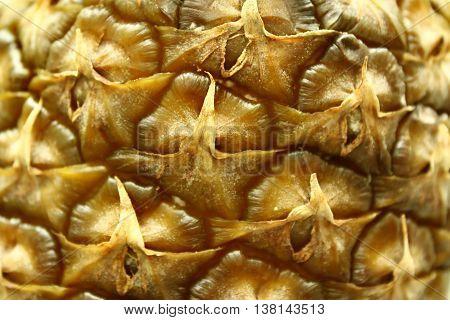 Beige texture of ripe pineapple peel closeup