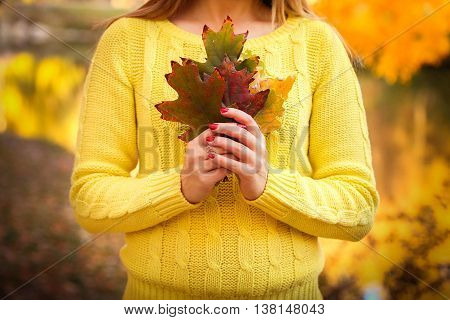 Young beautiful girl standing in the autumn park and holding bright yellow and orange leaves. Bright autumn