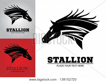 Hairy black wild horse. Great Horse. black Horse on the white background.