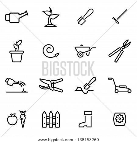 Vector illustration of thin line icons - gardening on white background