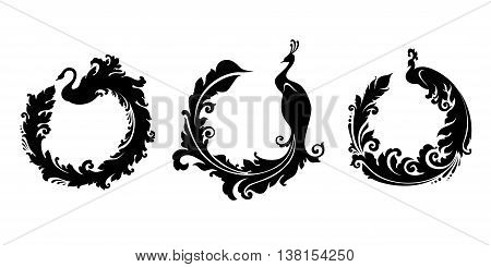 Decorative bird peacock with long decorative tail and place for text. Vector illustration