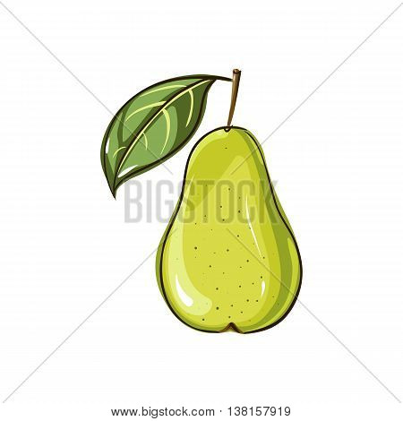 Vector pear isolated. Vector pear template. Pear icon. Pear design elements template pack.