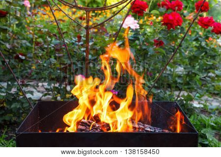Burning wood in a brazier. Fire flames. Grill or bbq