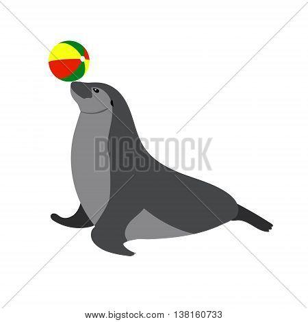 Illustration of Circus seal playing a ball. Ocean animal