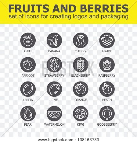 Fruit and berries icon collection - vector illustration. Fruit and berries icons set for creating logos and packaging. Fruit and berries line icons.