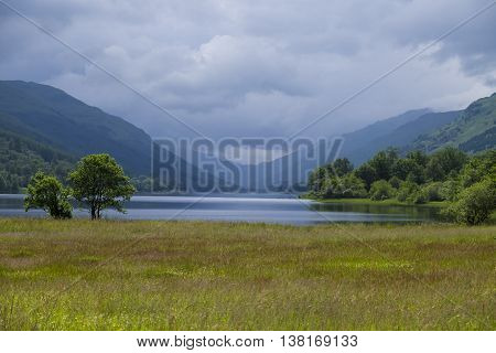 Scottish wildflower meadow with Loch Voil and soft greens and blues of scenic hills and glens in the background.