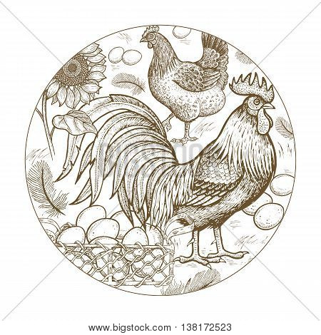 Vector illustration - composition with circle poultry rooster and hen basket with eggs flowers sunflowers feathers on a white background. A series of farm animals. For store agricultural products.
