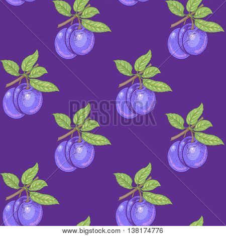 Vector seamless pattern. Branches with leaves and plums on a purple background. Illustration for design packaging paper wallpaper fabrics textiles.
