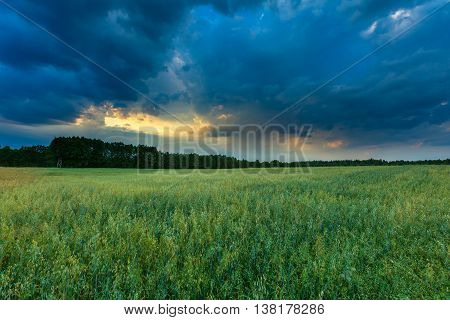Beautiful Stormy Sky Over Fields In Poland