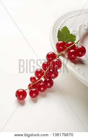Redcurrant with leaf on white close up