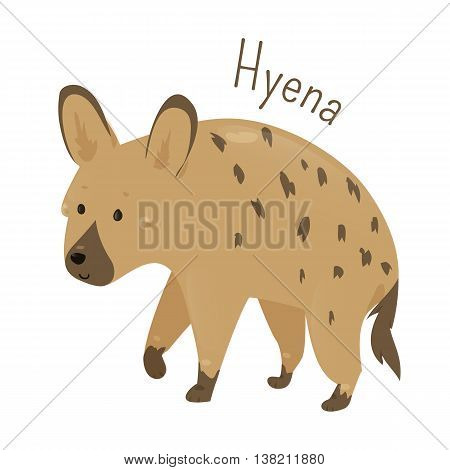 Hyena isolated. Hyenas or hyaenas. Feliform carnivoran mammals of the family Hyaenidae. Part of series of cartoon savannah animal species. Sticker for kids. Child fun pattern icon. Vector