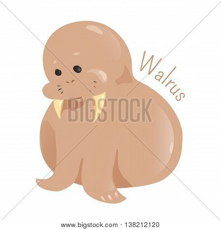 Walrus isolated on white background. Only living species in the family Odobenidae. Part of series of cartoon sea creature species. Marine animals. Sticker for kids. Child fun pattern icon. Vector