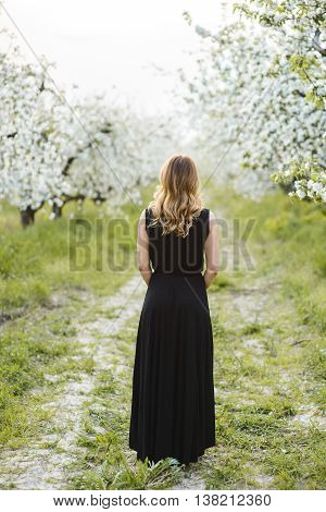 Beautiful young woman in long dress in a blooming spring garden backview
