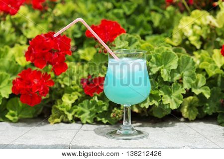 Blue cocktail outdoors with a red flowers on background