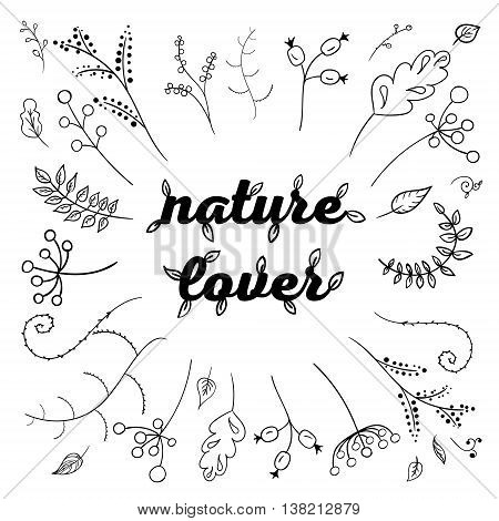 Herbs and flowers painted black line. Vector drawing. Template with a sketch of herbs.