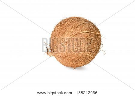 Whole ripe brown coconut isolated on white background