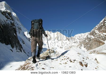 Hiker going  in Himalayan mountain
