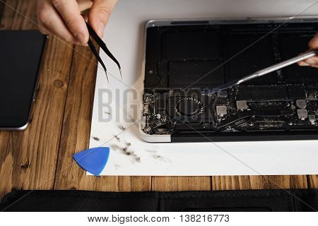 Removing dust with angled tweezers from cooler on gpu of small thin laptop in repairing service