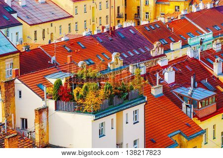 View to the colorful roofs and houses with garden of Vysegrad in Prague, Czech Republic at autumn - aerial image, travel seasonal background