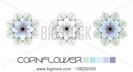 Stylized Cornflower colouring, page with watercolour and flat colour examples and a black and white option to complete yourself.