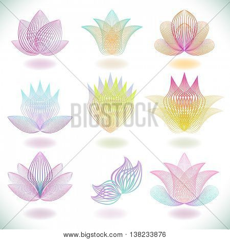 Color line blend flower elements isolated on white background.