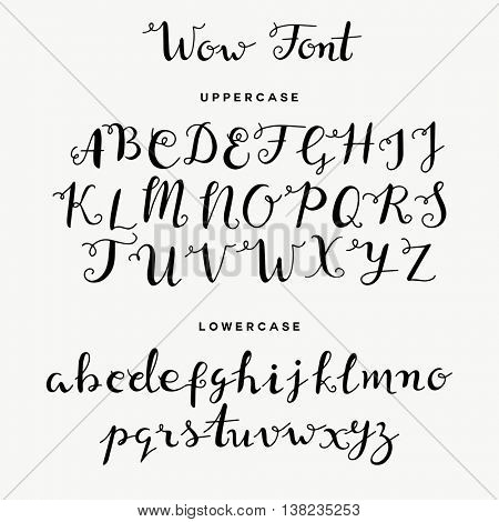 Hand drawn calligraphy curly font