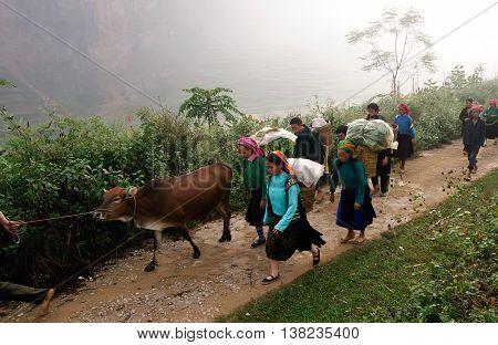 HA GIANG, VIETNAM, January 14, 2016 People, groups, ethnic Hmong, Ha Giang mountainous region, go to market, Dong Van, Ha Giang