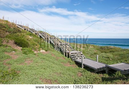 Elevated boardwalk through the green coastal dunes with nesting sea gulls and Indian Ocean seascape under a blue sky with clouds in Rockingham, Western Australia.