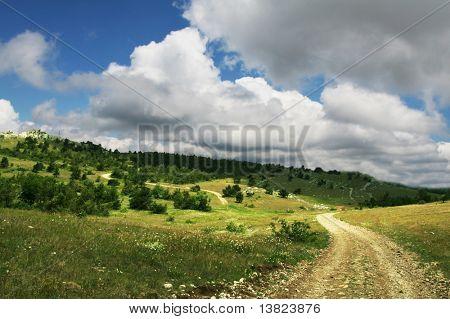 Prado de verano y camino en la montaña