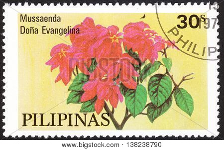 MOSCOW RUSSIA - DECEMBER 2015: a post stamp printed in PHILIPPINES shows a flower Mussaenda Dona Evangelina the series