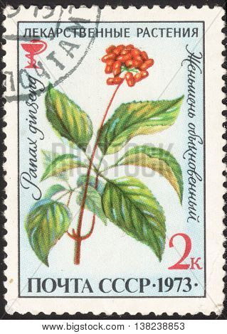 MOSCOW RUSSIA - DECEMBER 2015: a post stamp printed in the USSR shows a flower with the inscription