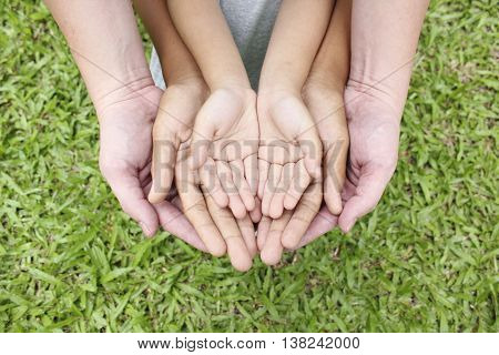 Adult hands holding kid hands over green grass background.
