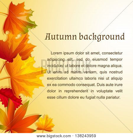Abstract background with autumn leaves. Vector illustration. Cartoon style. Yellow and red leaves arranged on the left side. Template for text.