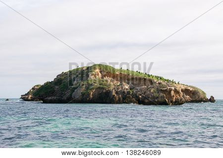Limestone rock island with native flora and nesting pied cormorants in the Indian Ocean waters off the coast of Rockingham, Western Australia.