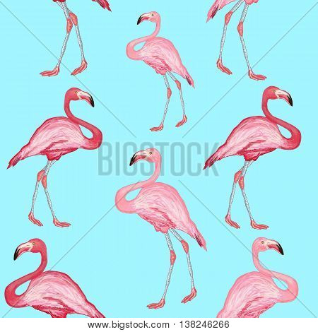 Flamingo pattern beautiful bird flamingos on a blue background hand drawn vector