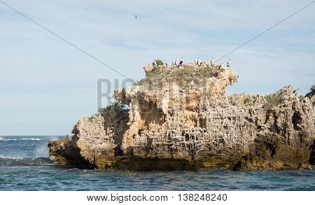 Limestone rock formations with nesting Australian Pied Cormorants and the turquoise Indian Ocean waves rushing under a cloudy sky in Rockingham, Western Australia.