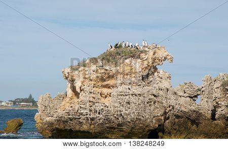 Limestone rock formations with nesting Australian Pied Cormorants in the turquoise Indian Ocean waters under a cloudy sky in Rockingham, Western Australia.