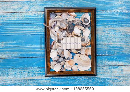 Sign Sea Adventure And Sea Shells In Photo Frame