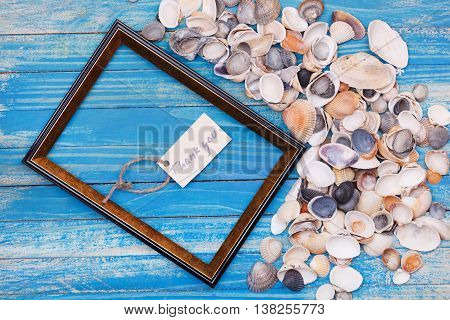 Sign Thank You With Shells And Photo Frame. Vocation Background