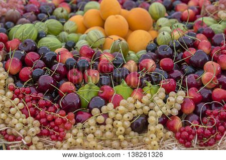 A fruit basket with Mixed organic berries