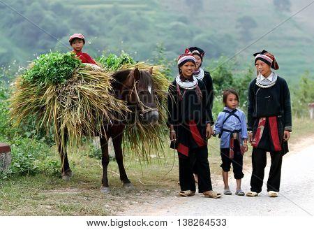 HA GIANG, VIET NAM, August 24, 2015 the group of women, children, ethnic Hmong, ha Giang mountainous areas, breeding horses