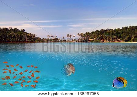 Tropical paradise and corals on a reef top Koh Cahg island Thailand