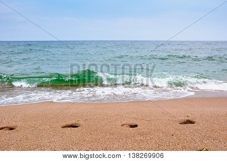 Footsteps on the beach by the Black sea in summer