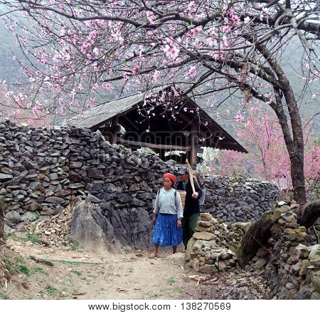 HA GIANG, VIET NAM, January 24, 2016 peasant couple, high mountains, Ha Giang, Vietnam. on the way home, in the spring