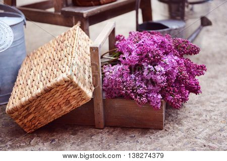 Lilac bouquets in wooden crate