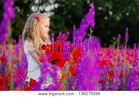 happy little girl in a field of poppies and purple wildflowers